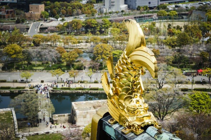 Złoty delfin zdjęcie royalty free