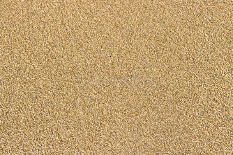 Złoty denny piasek idealna konsystencja tło piasku Piaskowata plaża dla tła Odgórny widok zdjęcie stock