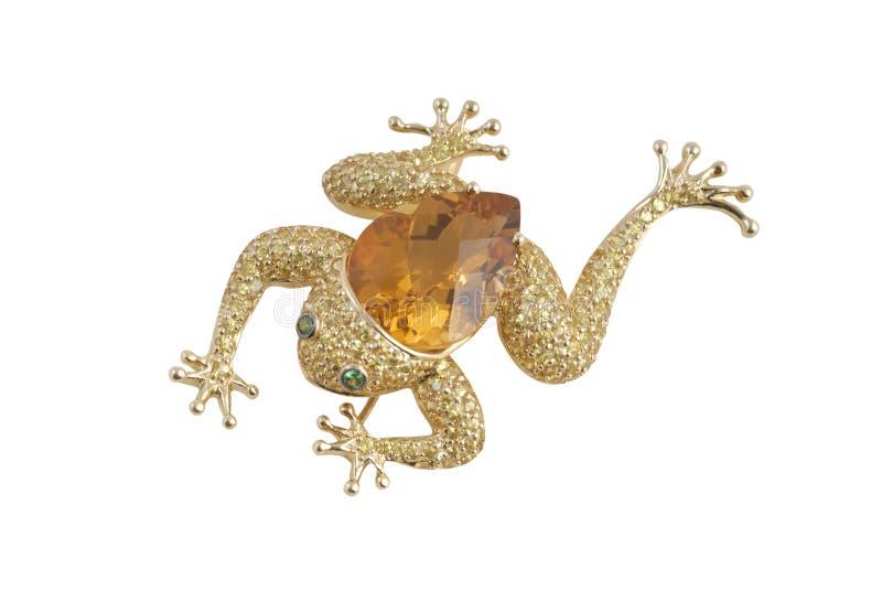 złoty hairpin zdjęcie royalty free