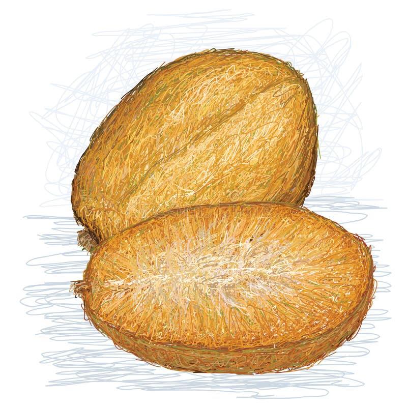 Download Złoty Jabłko Z Przekrój Poprzeczny Ilustracja Wektor - Ilustracja złożonej z świeży, smakowity: 28953458