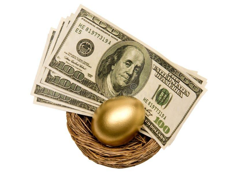 Złoty jajko i pieniądze W gniazdeczku Odizolowywającym Na bielu obraz stock
