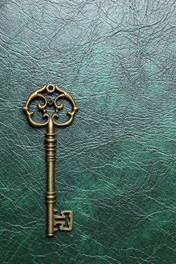 Złoty klucz na skórze obraz royalty free