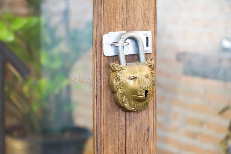 Złoty klucz w lew twarzy kształtującej obrazy royalty free