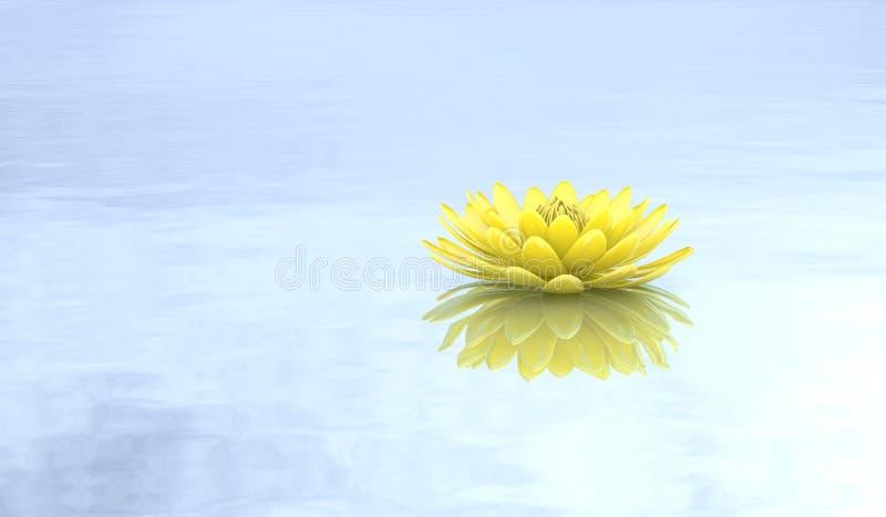 Złoty lotosowy wodnej lelui czysty tło ilustracja wektor