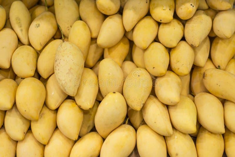 Złoty mango obraz stock