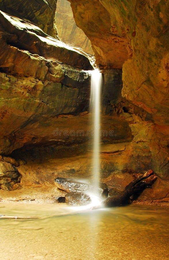 złoty prysznic obraz stock