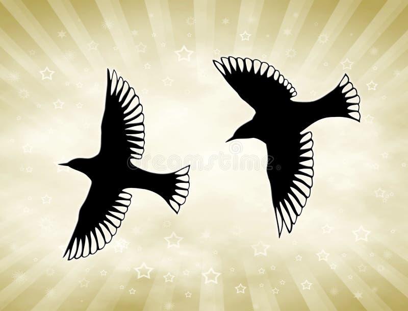 złoty ptaka słońce obrazy royalty free