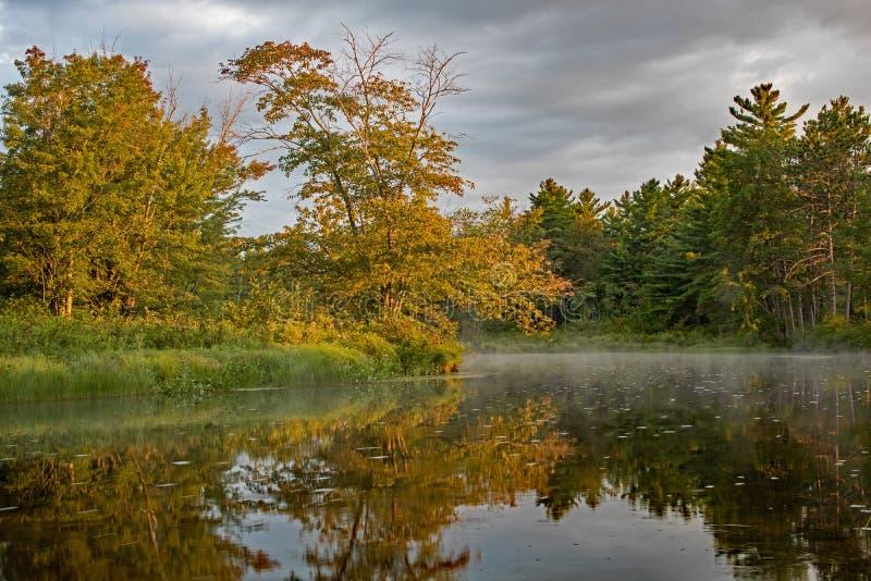 Złoty wschód słońca światło Uderza Riverbank zdjęcie royalty free