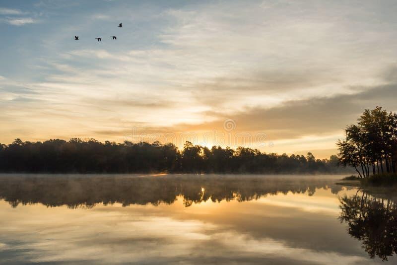 Złoty wschód słońca odbicie na Mglistym jeziorze fotografia royalty free