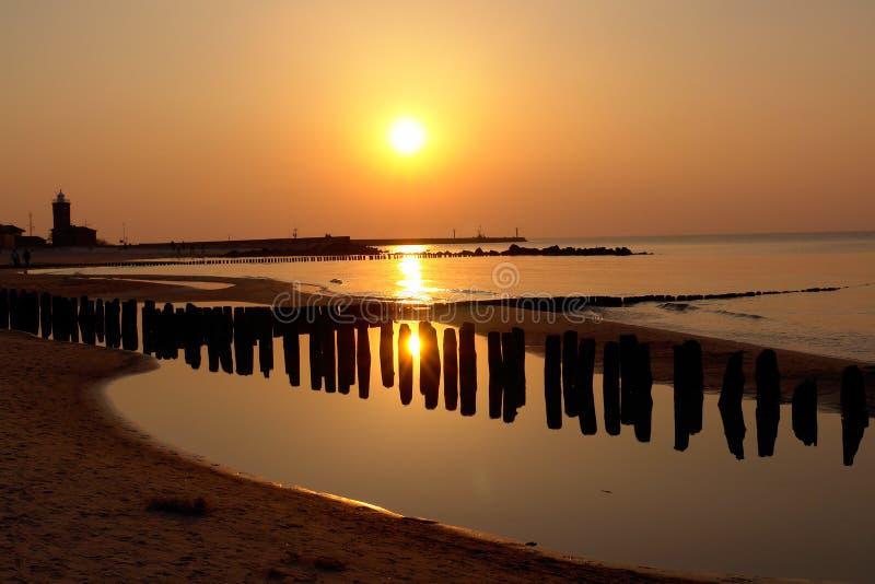 złoty zachód słońca na plaży zdjęcie royalty free
