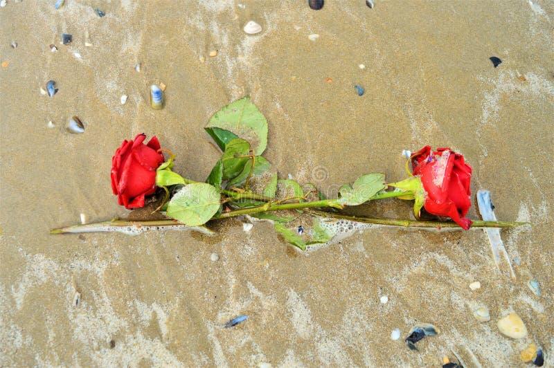Złudzenie i miłość, symbole fotografia stock