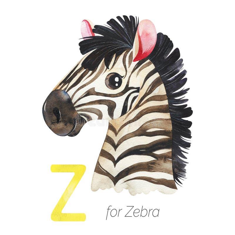 Z字母的可爱斑马 库存例证