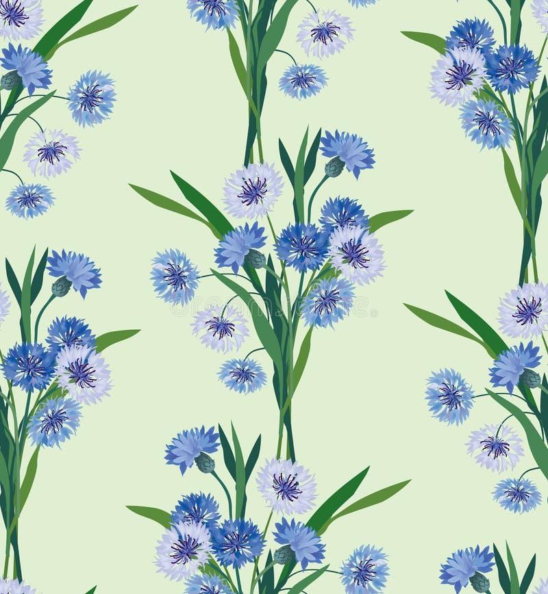Z łąkowym kwiatem bezszwowy tło ilustracja wektor
