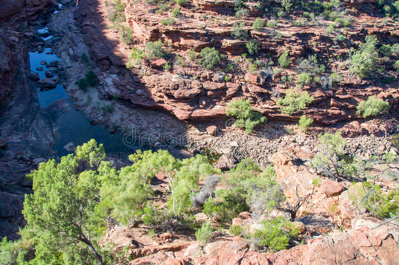 Z-загиб: Изрезанное ущелье реки стоковая фотография