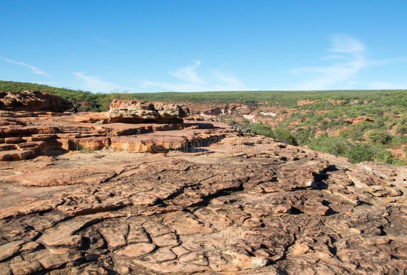 Z-загиб: Национальный парк Kalbarri стоковая фотография rf