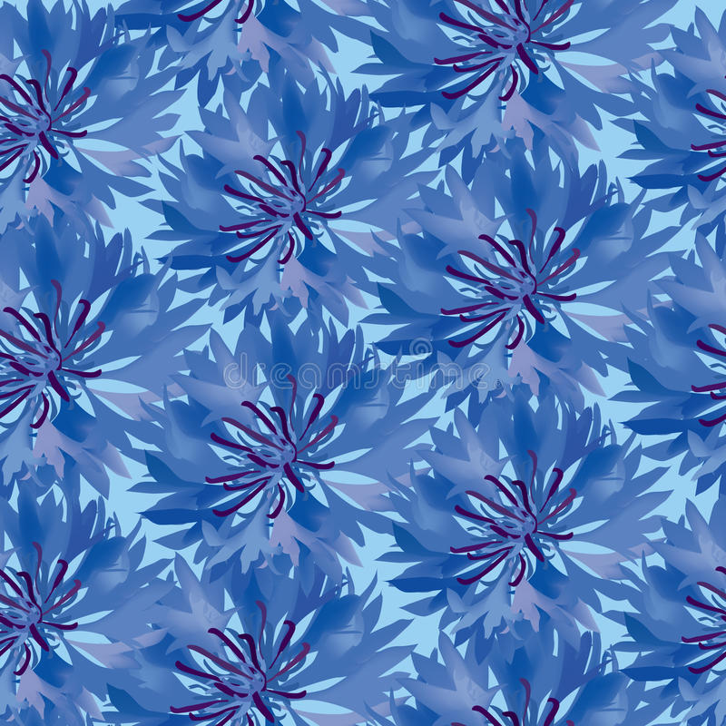 Z błękitny cornflower bezszwowy wzór ilustracja wektor