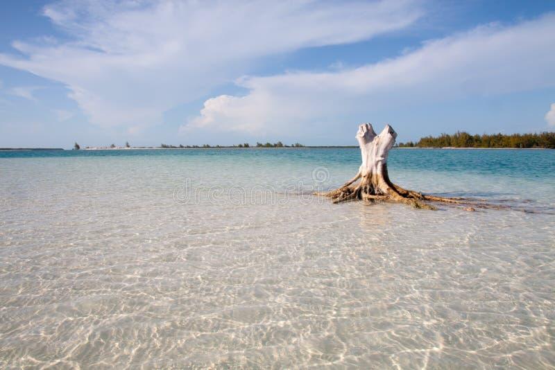 Z Biały Piaskiem Tropikalna Plaża Fotografia Stock