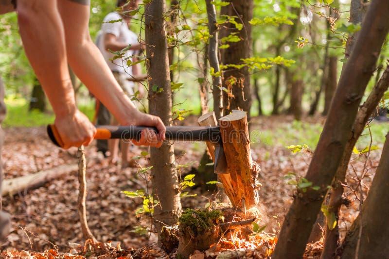 Z cioską ciapania drewno obrazy stock