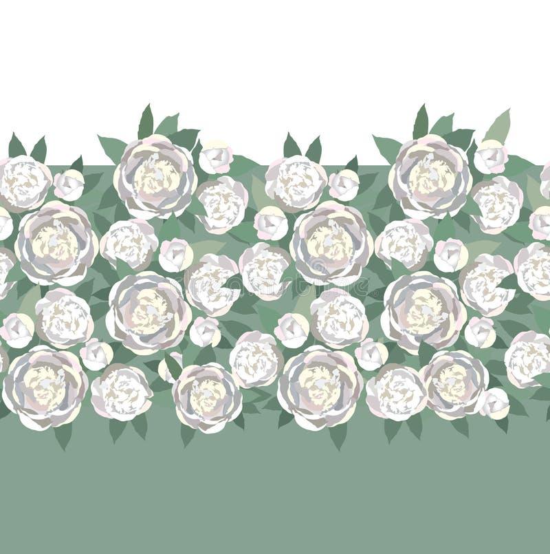 Z delikatnymi biały kwiatami tekstury bezszwowa granica ilustracji