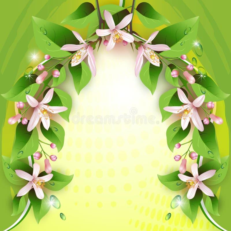 Z delikatnymi kwiatami piękny tło ilustracji