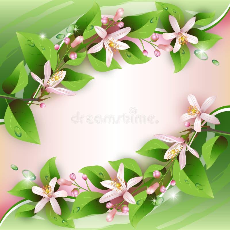 Z delikatnymi kwiatami piękny tło ilustracja wektor
