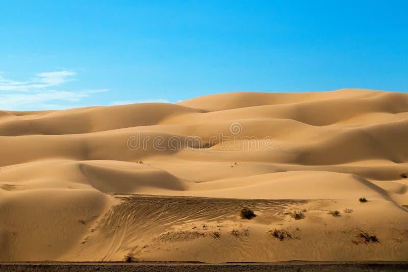 Z Drogowego pojazdu śladów na Yuma piaska diunach fotografia royalty free