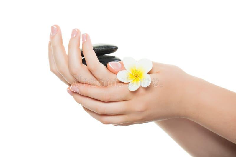 Z francuskim manicure'em kobiet piękne ręki obrazy royalty free