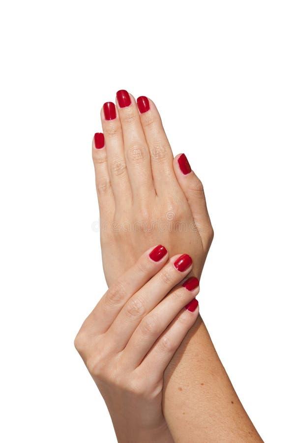 Z francuskim manicure'em kobiet piękne ręki obrazy stock