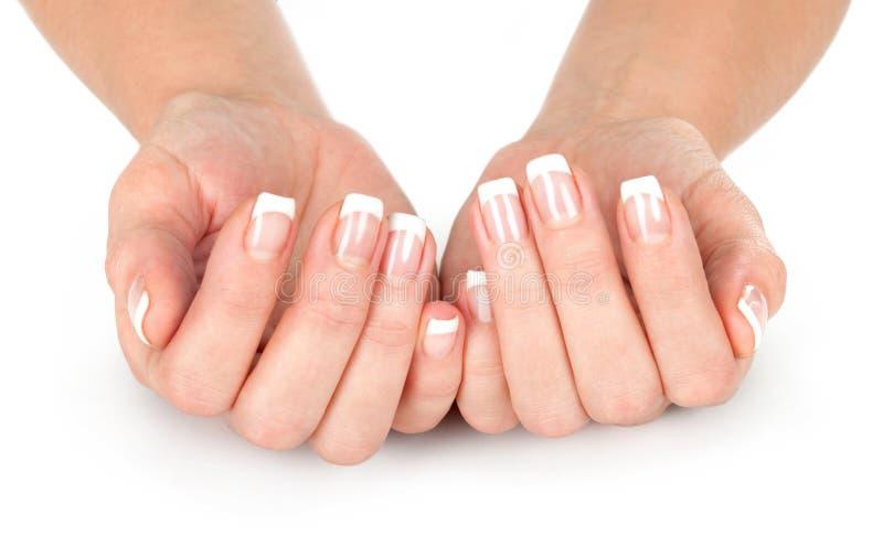 Z francuskim manicure'em kobiet piękne ręki fotografia royalty free