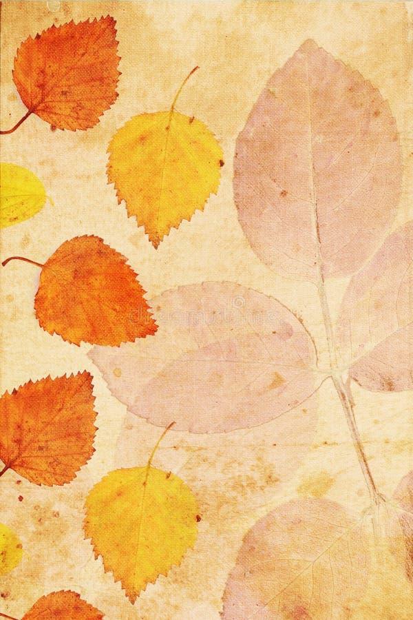 Z jesiennymi liść rocznika piękny tło ilustracja wektor