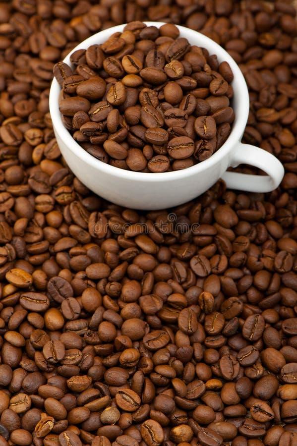Z kawowymi adra biały filiżanka fotografia royalty free