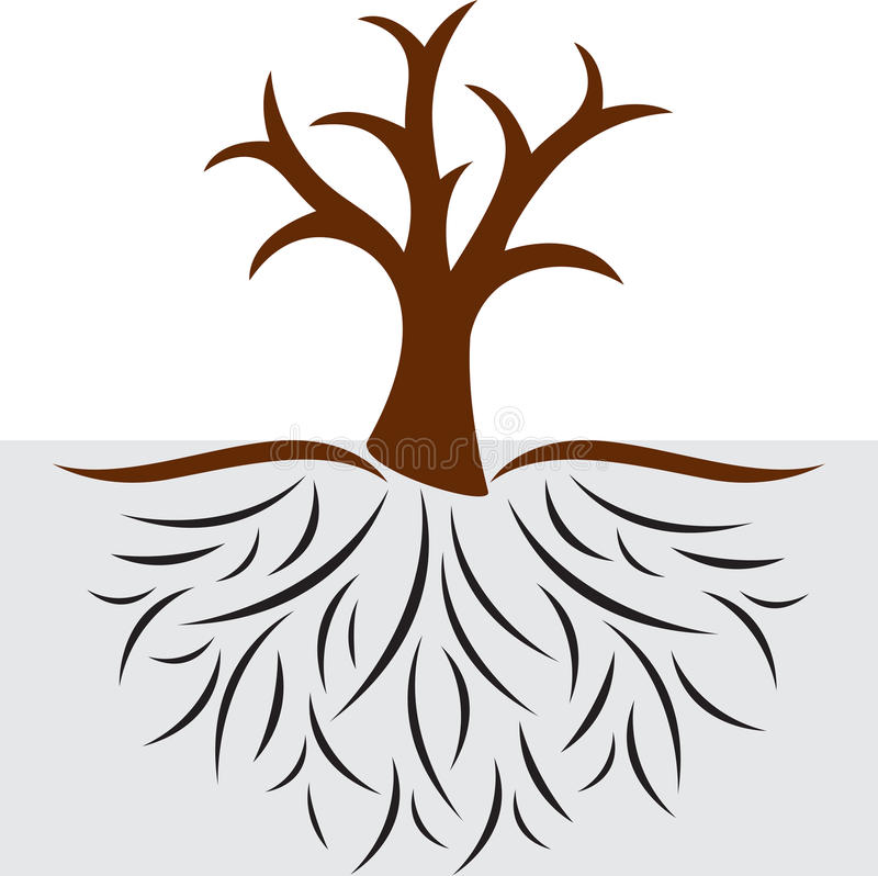 Z korzeniami pusty drzewo obrazy stock