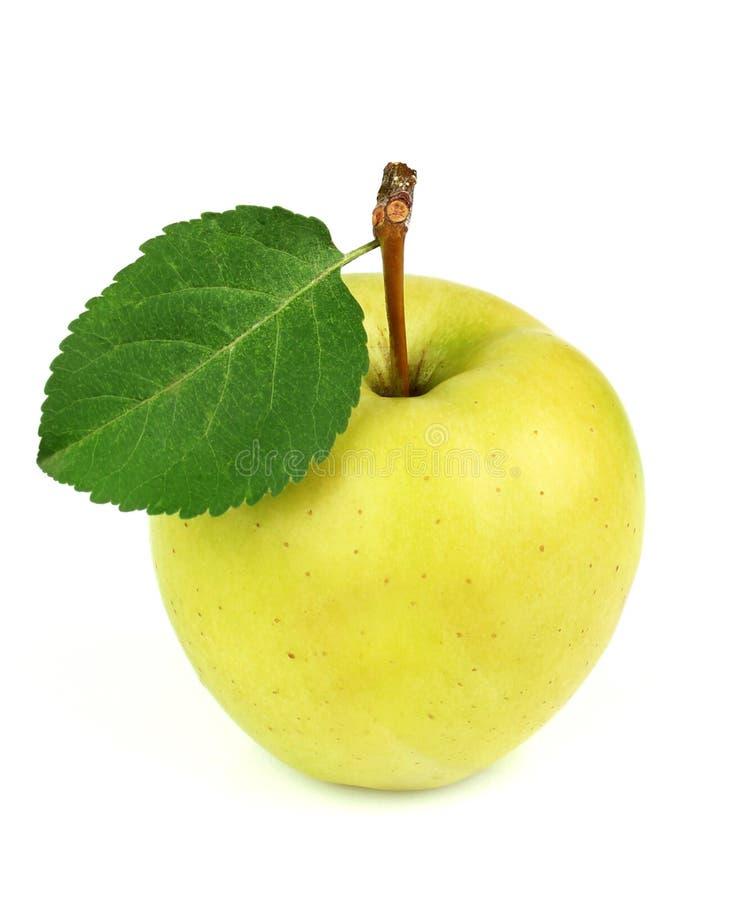 Z liść żółty dojrzały jabłko fotografia royalty free