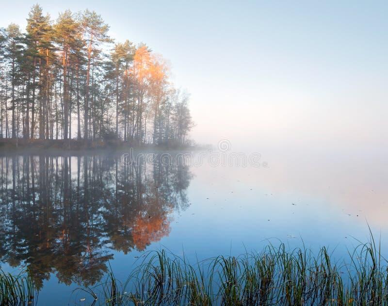 Z mgłą jezioro wciąż krajobraz zdjęcie royalty free