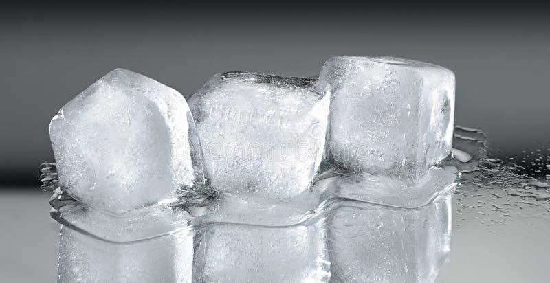 Z odbiciem trzy kostka lodu zdjęcie royalty free