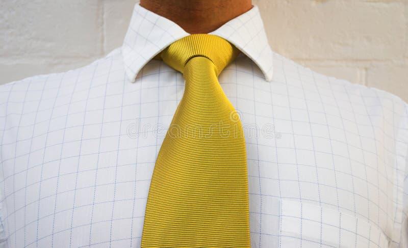Download Złoty neckwear zdjęcie stock. Obraz złożonej z tkanina - 128608