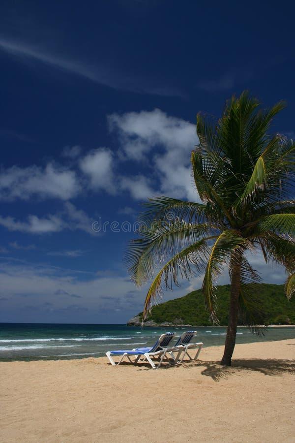 z pewnością malownicza karaibów na plaży obraz stock