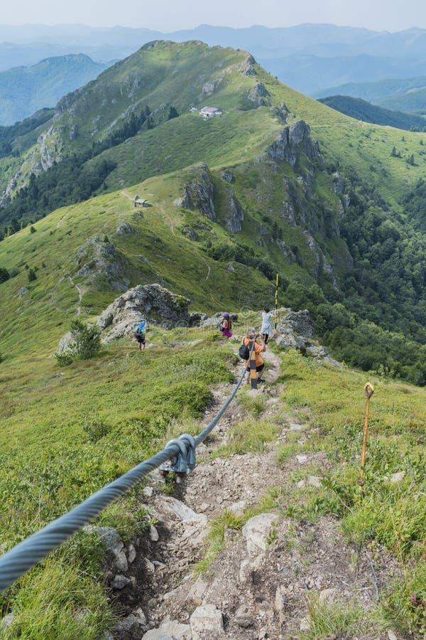 Z przyjaciółmi w górach Nieprawdopodobny widok Troyan Bałkański Góra zniewala z swój pięknem, świeże powietrze, sensy obrazy royalty free