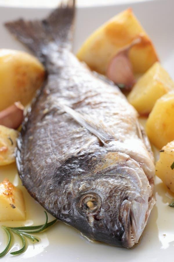 Z warzywami piec ryba obraz royalty free
