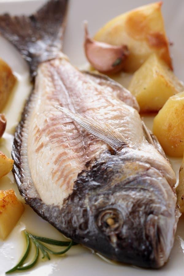 Z warzywami piec ryba zdjęcia stock