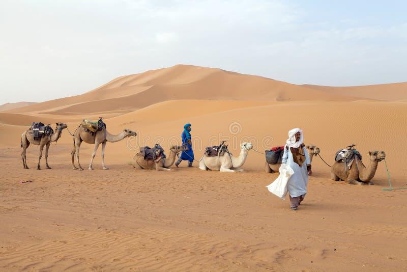 Z wielbłądami Berber mężczyzna fotografia stock