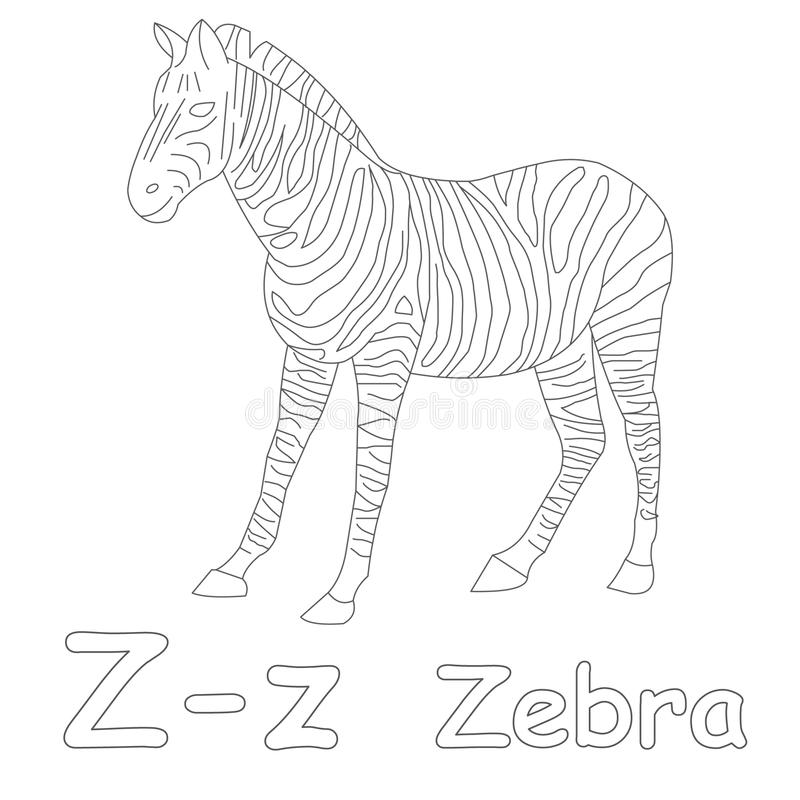 Zebra Color Page Great Coloring Book Page For Adult And Children