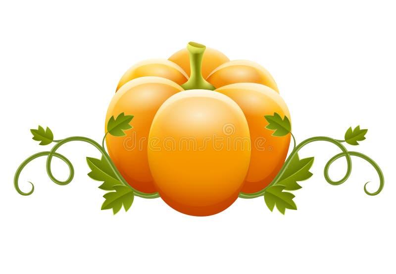 Z zielonymi liść dyniowy warzywo royalty ilustracja