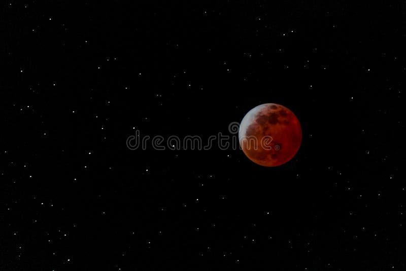 Zaćmienie Księżyca Styczeń 2019 zdjęcia stock