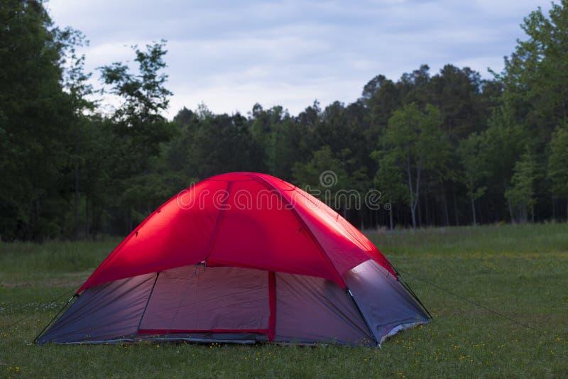 Zaświecający namiotowy ina ciemnienia las fotografia stock