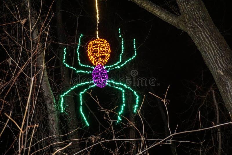 Zaświecający pająka obwieszenie od drzewa przy wakacje światła przedstawieniem fotografia royalty free