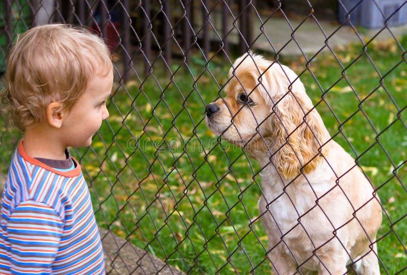 za chłopiec psa ogrodzeniem trochę obrazy royalty free