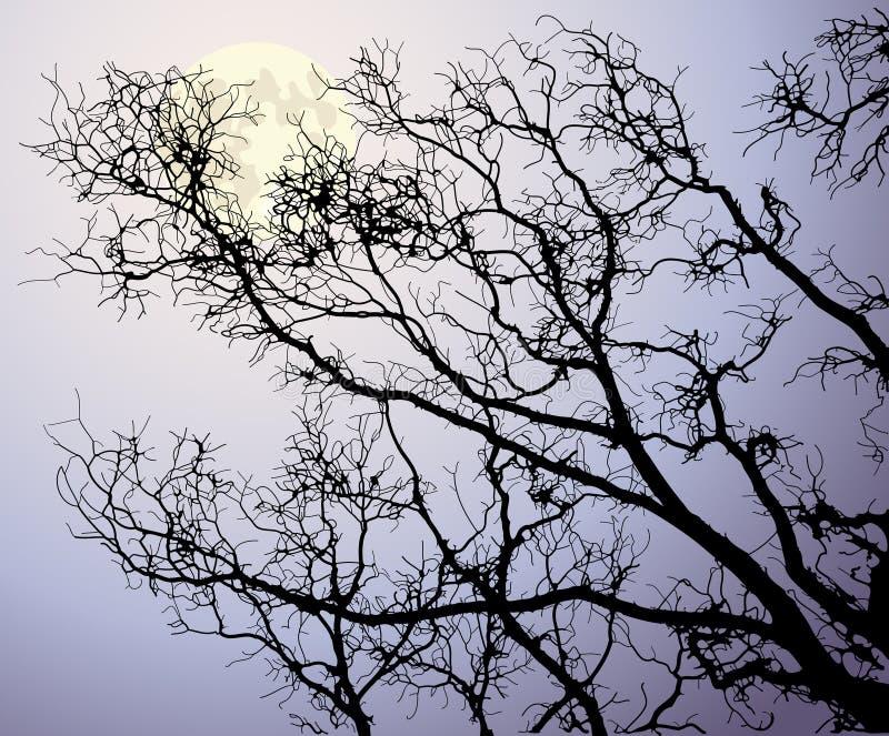 za gałąź księżyc drzewem ilustracja wektor