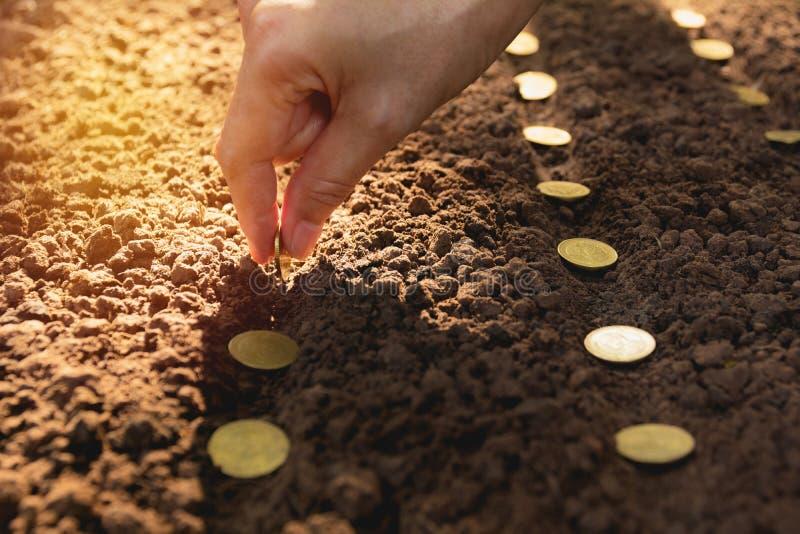 Zaailing en besparingsconcept door menselijke hand, Menselijke het zaaien muntstukken stock afbeeldingen