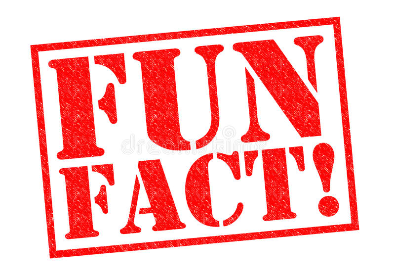 ZABAWA fact! ilustracja wektor
